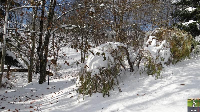 2013-11-24 : Neige et soleil à La Mainmorte (39) 2013-11-24_neige_07