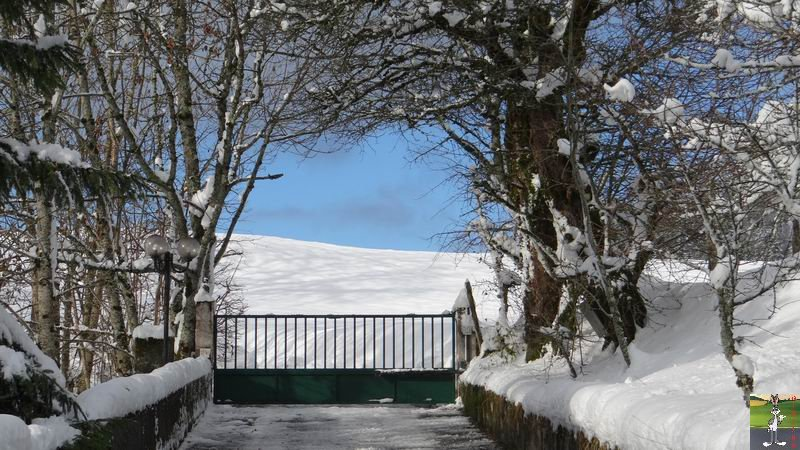2013-11-24 : Neige et soleil à La Mainmorte (39) 2013-11-24_neige_08