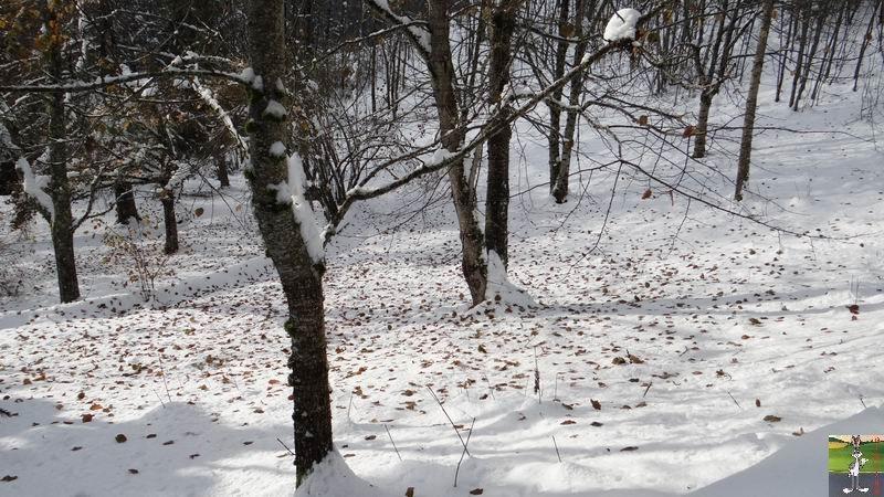 2013-11-24 : Neige et soleil à La Mainmorte (39) 2013-11-24_neige_15