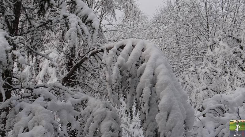 2013-12-27 : Neige et soleil à La Mainmorte (39) 2013-12-27_neige_soleil_03