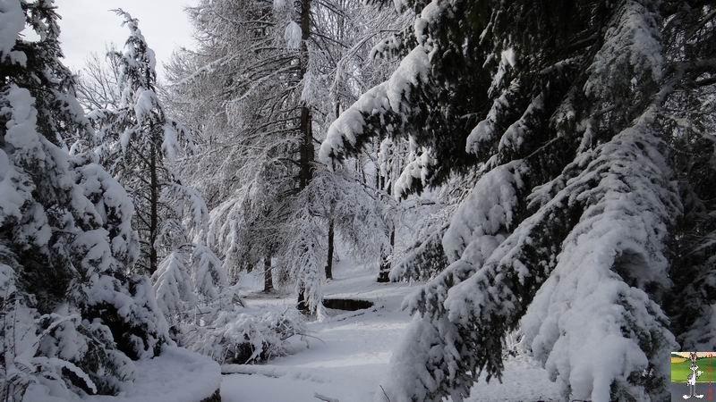 2013-12-27 : Neige et soleil à La Mainmorte (39) 2013-12-27_neige_soleil_05