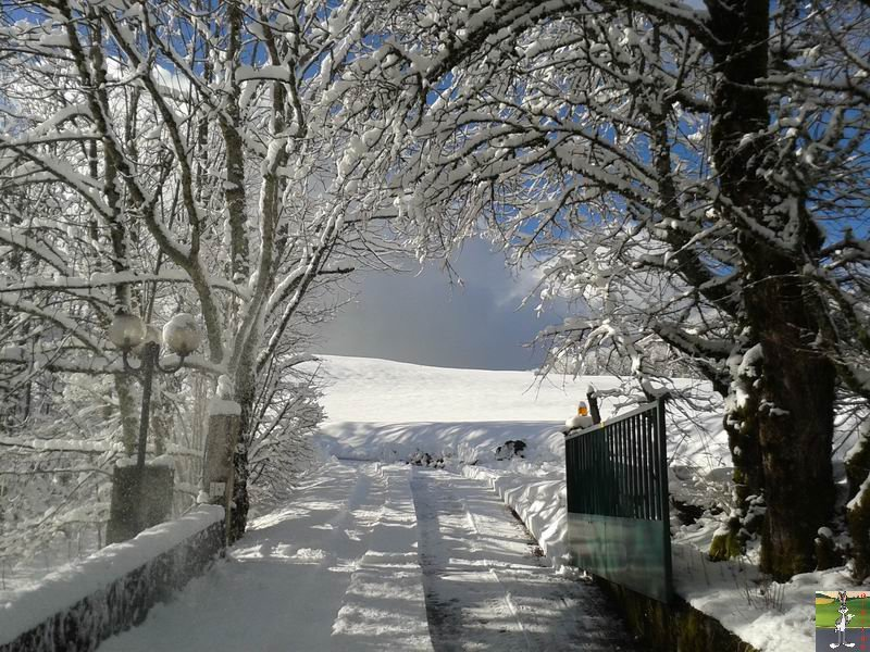 2014-01-24 : Neige et soleil à La Mainmorte (39) 2014-01-24_neige_soleil_12