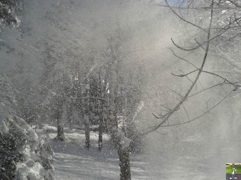 2014-01-24 : Neige et soleil à La Mainmorte (39) 2014-01-24_neige_soleil_14