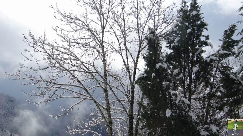 """Les 4 Saisons de """"Mon Jura"""" - Page 5 2014-03-23_neige_10"""