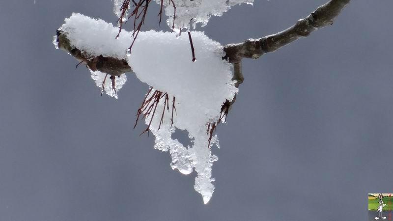 """Les 4 Saisons de """"Mon Jura"""" - Page 5 2014-03-23_neige_11"""