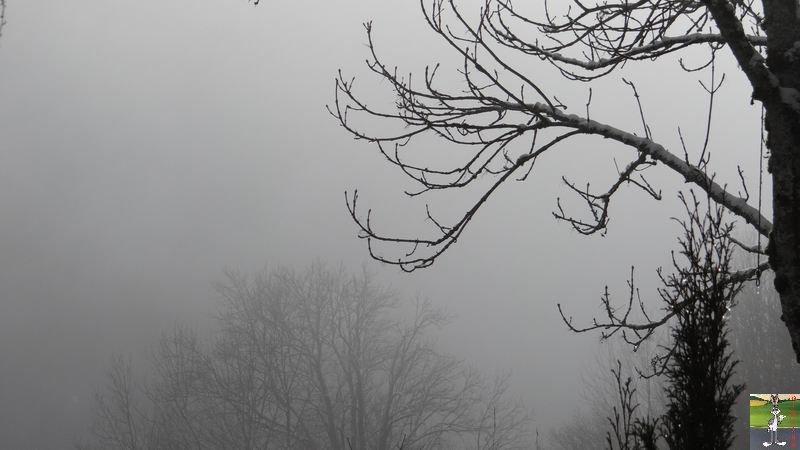 2014-12-26 : Neige du matin à La Mainmorte (39) 2014-12-26_neige_10