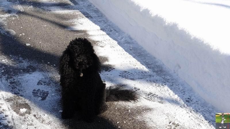 2014-12-30 : Neige, froid et soleil à La Mainmorte et en descendant à St-Claude (39) 2014-12-30_neige_soleil_05