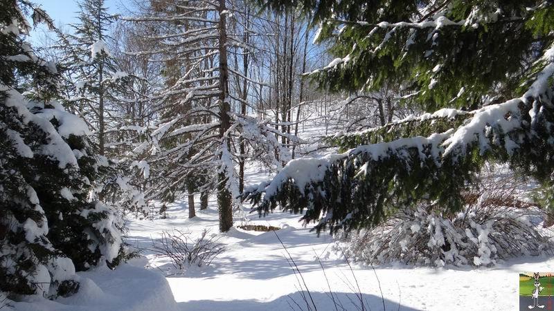 2014-12-31 : Neige, froid et soleil à La Mainmorte et en descendant à St-Claude (39) 2014-12-31_neige_soleil_02