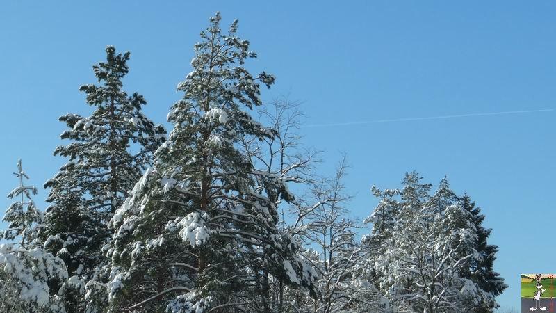 2014-12-31 : Neige, froid et soleil à La Mainmorte et en descendant à St-Claude (39) 2014-12-31_neige_soleil_23