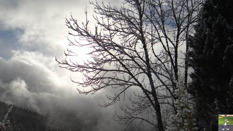 2015-01-11 : La neige le soleil à La Mainmorte (39) 2015-01-11_neige_soleil_01