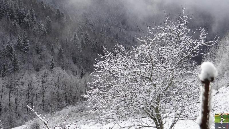 2015-01-11 : La neige le soleil à La Mainmorte (39) 2015-01-11_neige_soleil_05