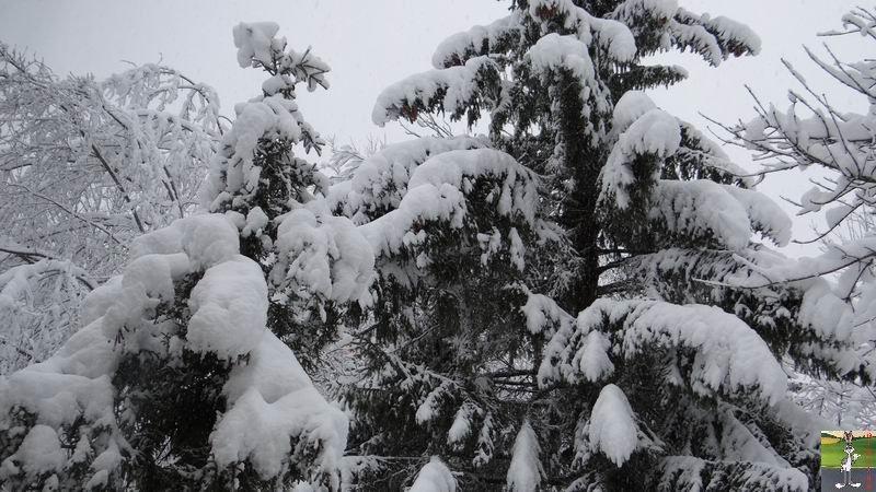 2015-01-17 : Neige à La Mainmorte (39) 2015-01-17_neige_11