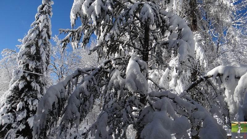 2015-01-18 : Neige et soleil à La Mainmorte (39) 2015-01-18_neige_soleil_02