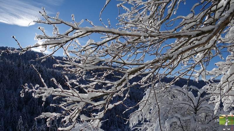 2015-01-18 : Neige et soleil à La Mainmorte (39) 2015-01-18_neige_soleil_10