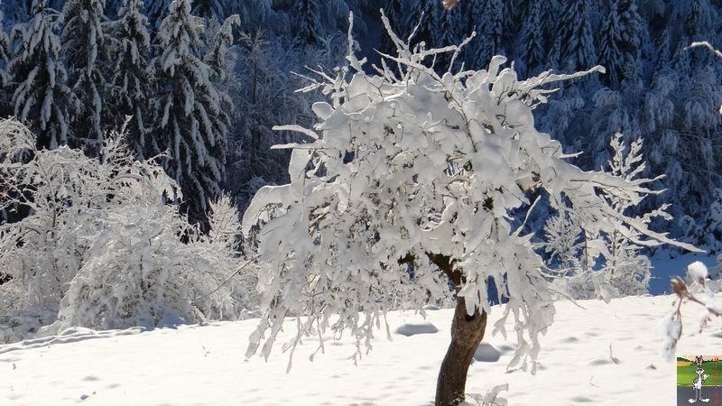 2015-01-18 : Neige et soleil à La Mainmorte (39) 2015-01-18_neige_soleil_13