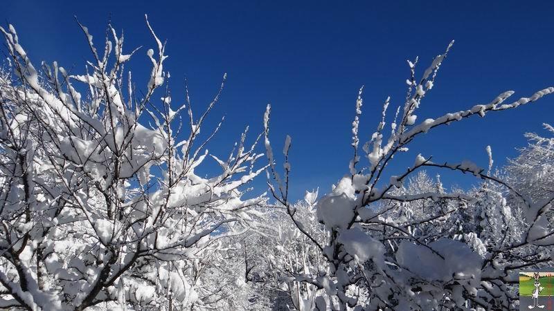 2015-01-18 : Neige et soleil à La Mainmorte (39) 2015-01-18_neige_soleil_14