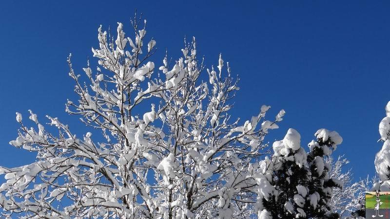 2015-01-18 : Neige et soleil à La Mainmorte (39) 2015-01-18_neige_soleil_15