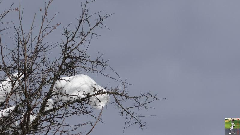 2015-01-25 : Neige et soleil à La Mainmorte (39) 2015-01-25_neige_soleil_06