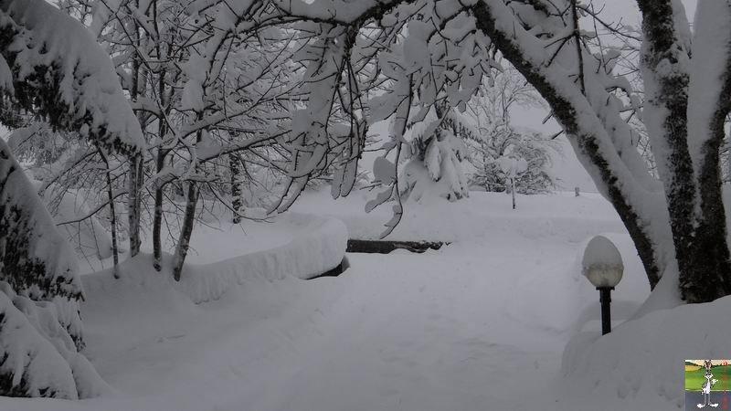 2015-01-31 : Neige à La Mainmorte (39) 2015-01-31_neige_10