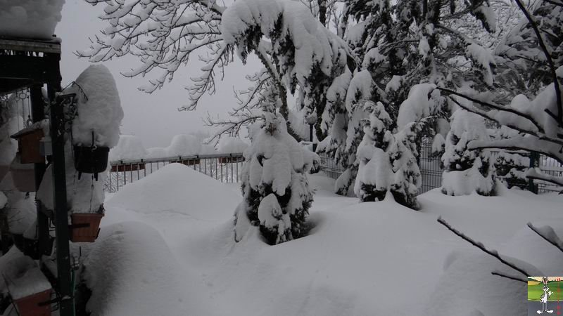2015-01-31 : Neige à La Mainmorte (39) 2015-01-31_neige_15