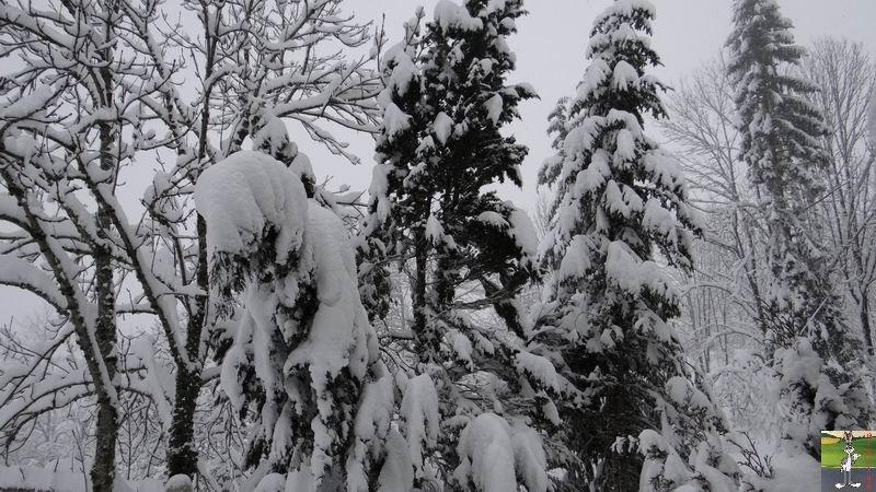 2015-01-31 : Neige à La Mainmorte (39) 2015-01-31_neige_22