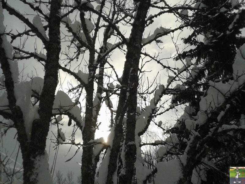 2015-02-06 : Neige et un petit soleil à La Mainmorte (39) 2015-02-06_neige_soleil_11