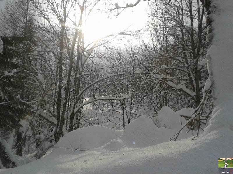 2015-02-06 : Neige et un petit soleil à La Mainmorte (39) 2015-02-06_neige_soleil_13