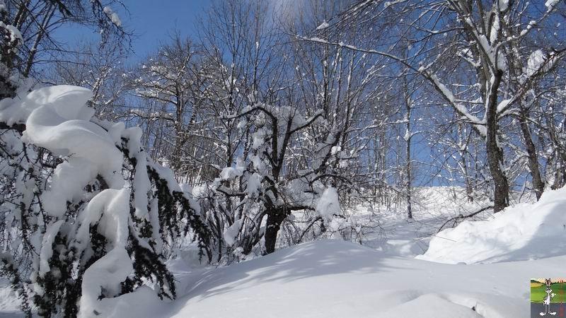 2015-02-07 : Neige et soleil à La Mainmorte (39) 2015-02-07_neige_soleil_20