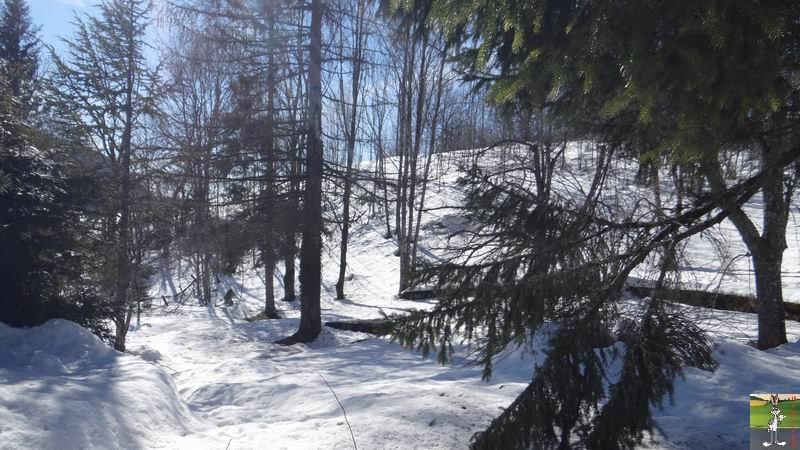 2015-02-20 : Neige et soleil à La Mainmorte (39) 2015-02-20_soleil_04