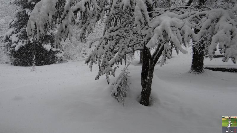 2015-02-21 : Retour de la neige à La Mainmorte (39) 2015-02-21_neige_01