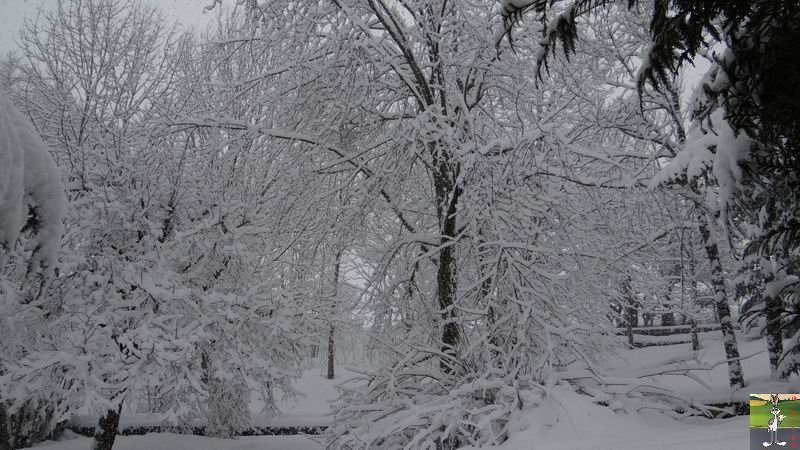 2015-02-21 : Retour de la neige à La Mainmorte (39) 2015-02-21_neige_04