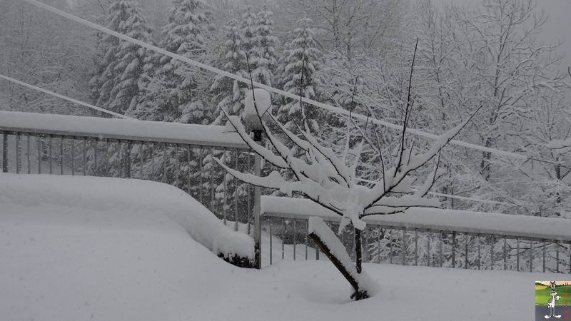 2015-02-21 : Retour de la neige à La Mainmorte (39) 2015-02-21_neige_06