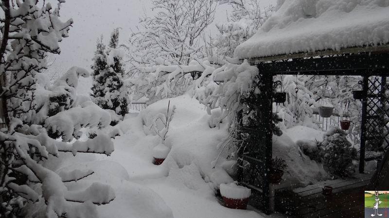 2015-02-21 : Retour de la neige à La Mainmorte (39) 2015-02-21_neige_10