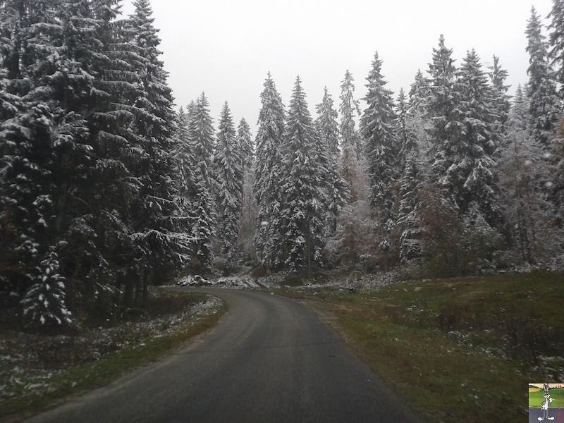 2015-10-16 : Première neige dans la foret de Haut-Cret (39) 2015-10-16_premiere_neige_03