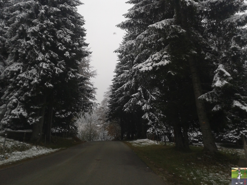 2015-10-16 : Première neige dans la foret de Haut-Cret (39) 2015-10-16_premiere_neige_08