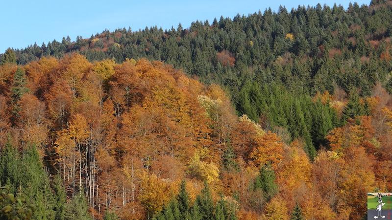 2015-10-25 : De belles couleurs d'automne à La Mainmorte (39) 2015-10-25_couleurs_automne_04
