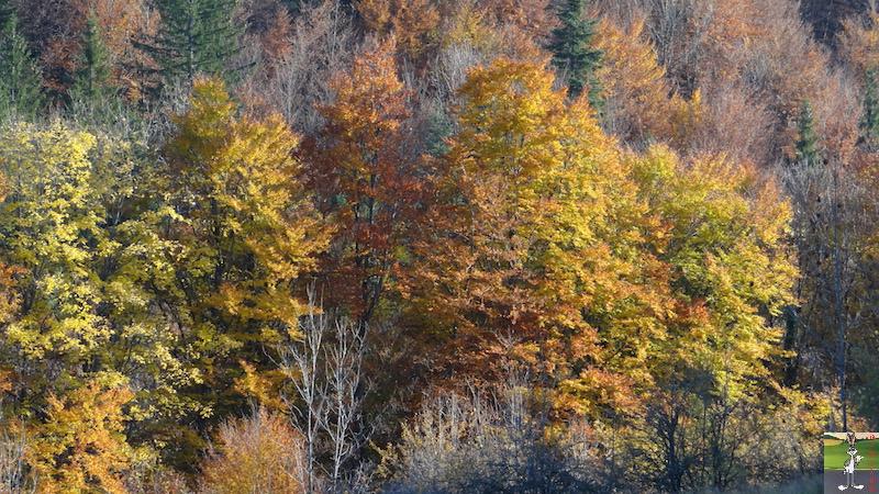 2015-10-25 : De belles couleurs d'automne à La Mainmorte (39) 2015-10-25_couleurs_automne_08