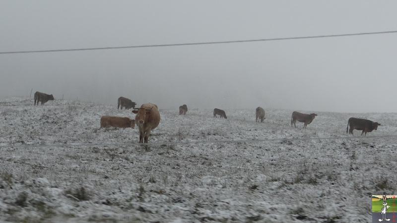 "2015-11-21 : ""Vraie"" première neige à La Mainmorte (39) 2015-11-21_neige_02"