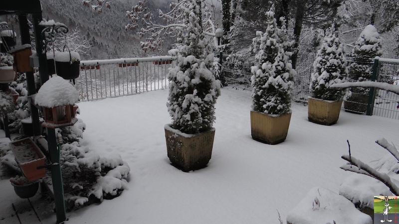 "2015-11-21 : ""Vraie"" première neige à La Mainmorte (39) 2015-11-21_neige_06"