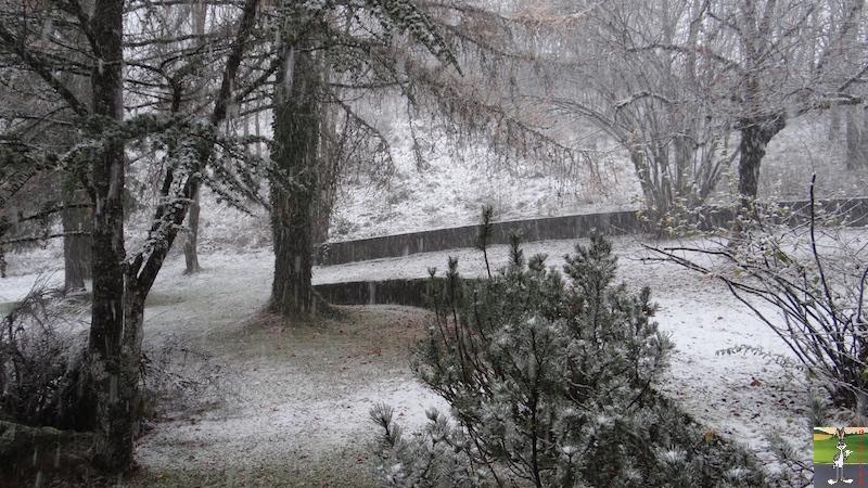 "2015-11-21 : ""Vraie"" première neige à La Mainmorte (39) 2015-11-21_neige_07"