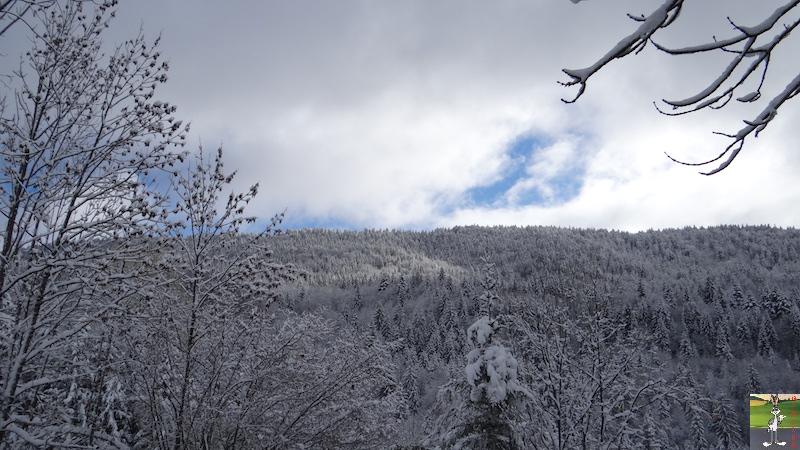 2015-11-22 : Neige à La Mainmorte (39) 2015-11-22_neige_08