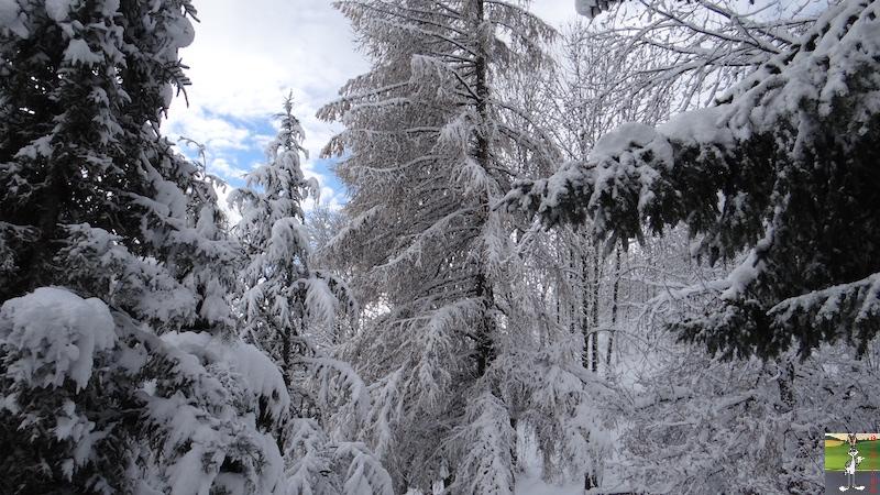 2015-11-22 : Neige à La Mainmorte (39) 2015-11-22_neige_09