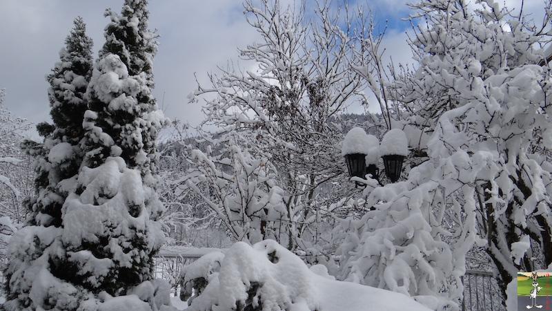 2015-11-22 : Neige à La Mainmorte (39) 2015-11-22_neige_11