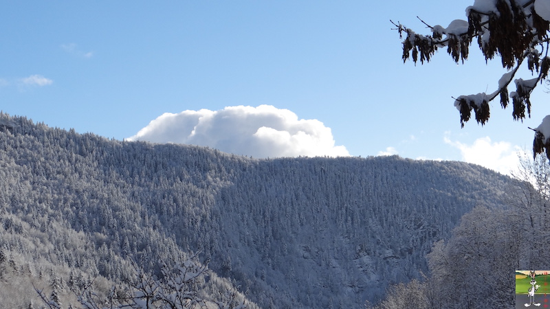 2015-11-22 : Neige à La Mainmorte (39) 2015-11-22_neige_17