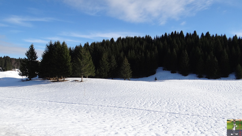 2015-12-05 : Balade dans les Hautes Combes, puis dans les Lacets de Septmoncel (39) 2015-12-05_balade_06