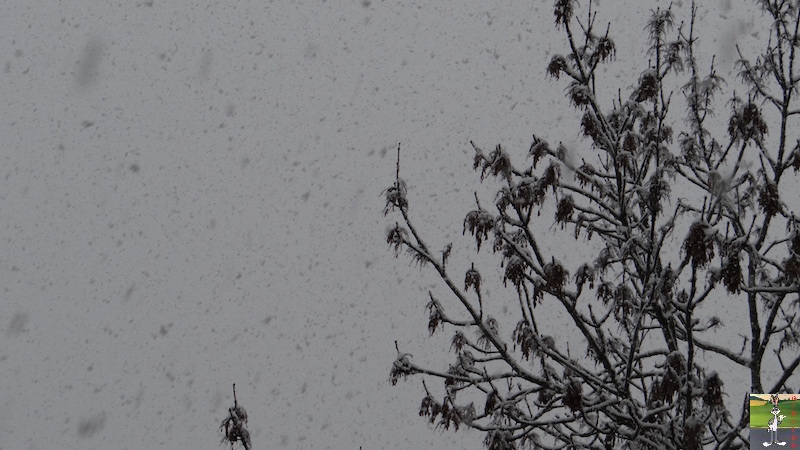 2016-02-07 : Neige à La Mainmorte (39) 2016-02-07_neige_04