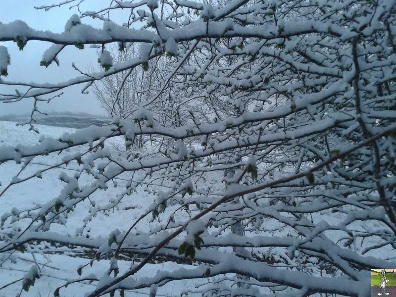 2016-04-27 : Neige à La Mainmorte (39) 2016-04-27_neige_10