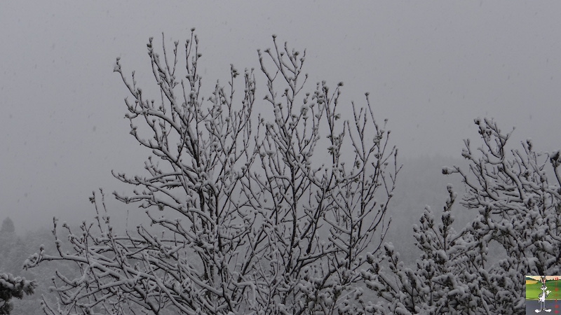 2016-05-01 : Encore et toujours de la neige à La Mainmorte (39) 2016-05-01_neige_03