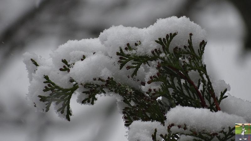 2016-05-01 : Encore et toujours de la neige à La Mainmorte (39) 2016-05-01_neige_06
