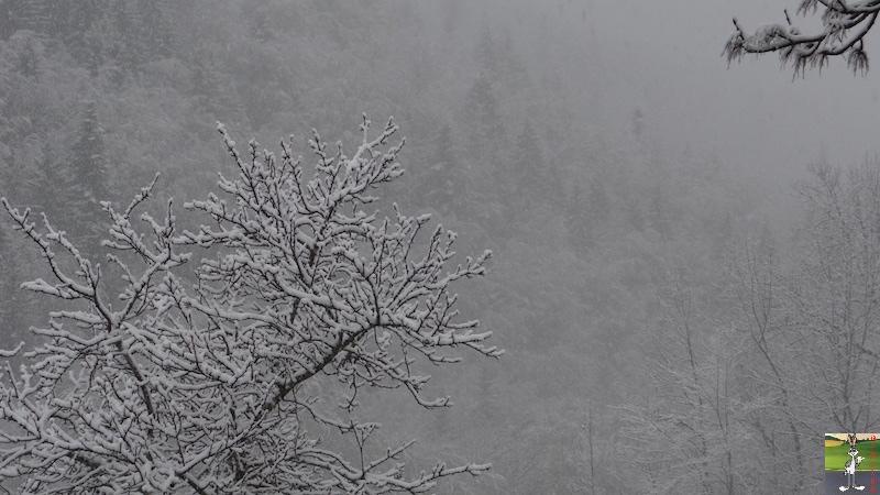 2016-05-01 : Encore et toujours de la neige à La Mainmorte (39) 2016-05-01_neige_10